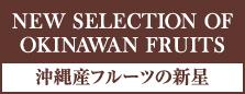 沖縄産フルーツの新星