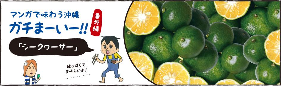 マンガで味わう沖縄。ガチまーいー!!「シークヮーサー」