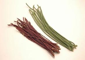 フーロー豆の写真