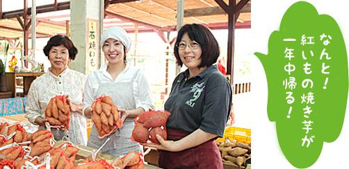 ユンタンザ18番市 農産物直売所の写真2