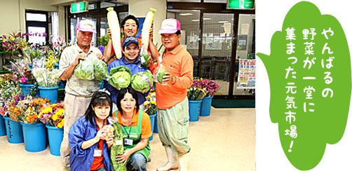 JAファーマーズマーケット はい菜!やんばる市場の写真2