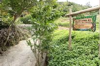 山の茶屋 楽水の写真1