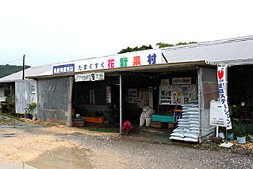 たまぐすく花野果村の写真1