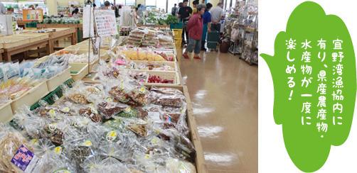 宜野湾はごろも市場の写真2