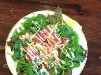 石垣島 ベーカリー&スペインレストラン ハイビスキャットの写真4