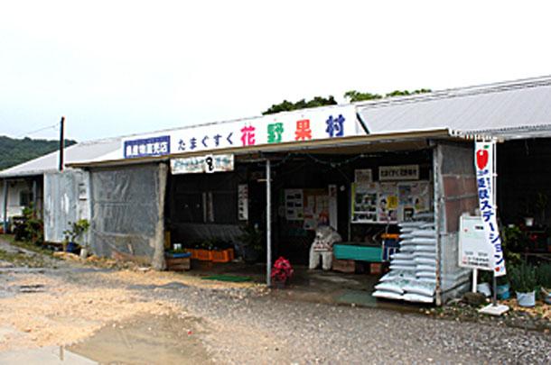 たまぐすく花野果村