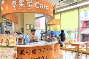 草果菜café(SOUKANA CAFÉ)の写真17