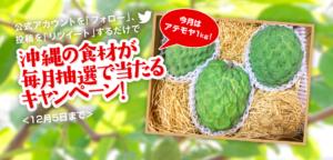 中村果樹園の「アテモヤ アフリカンプライド品種1kg」当選者発表!