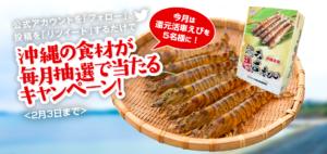 エナジック車海老養殖場の「還元活車えび」当選発表!