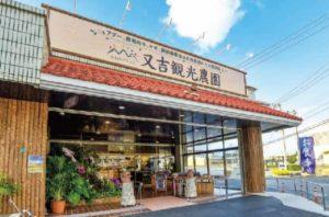 又吉観光農園レストランの写真6