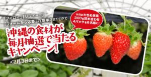 大きめ果実300G詰め合わせ4パックの当選者発表!