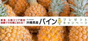 【東海・北陸エリア限定】沖縄県産パインプレゼントキャンペーンのお知らせ