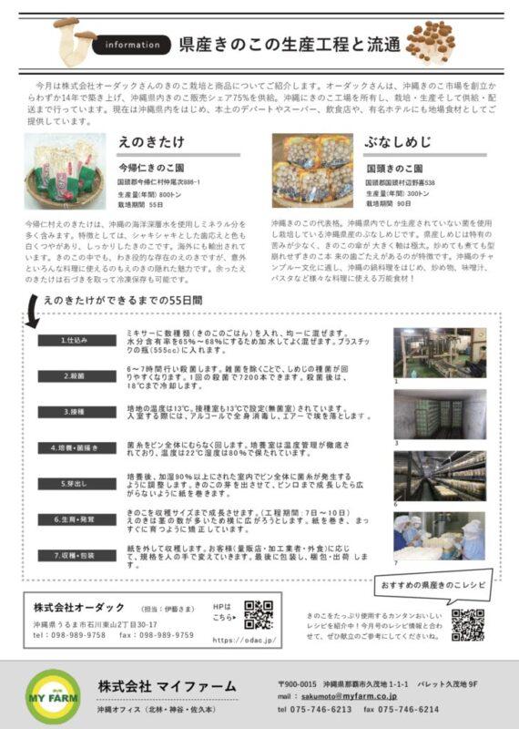 【7月】 くゎっちーおきなわ(NEWSページ)_ホテル等情報発信_Part3のサムネイル